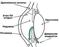 H40.1 Первичная открытоугольная глаукома