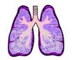 Эмфизема легких - что это такое, как лечить, симптомы, прогноз