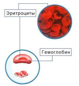 Среднее содержание гемоглобина в эритроците мсн