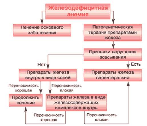 Ферритин крови