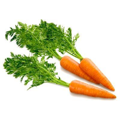 Морковь обыкновенная