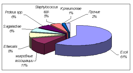 Этиологические агенты хронического пиелонефрита